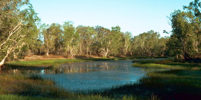 Billabong: An isolated pond that is left behind after a river changes course