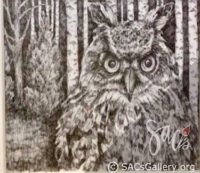 Owl with Birch Trees by Doti Kendrick
