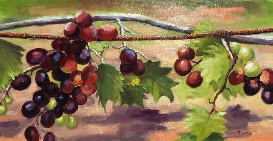 Scuppernong Vine by David Jones