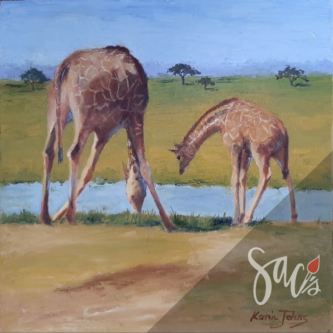 Two giraffe at drinking hole