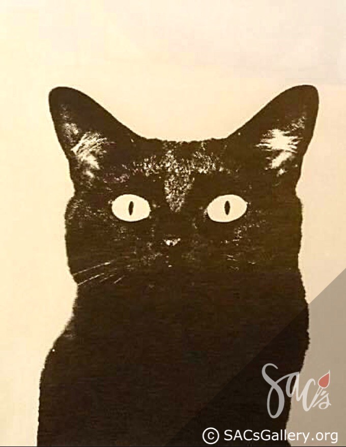 Sophia the Black Cat by R Keith Farrar